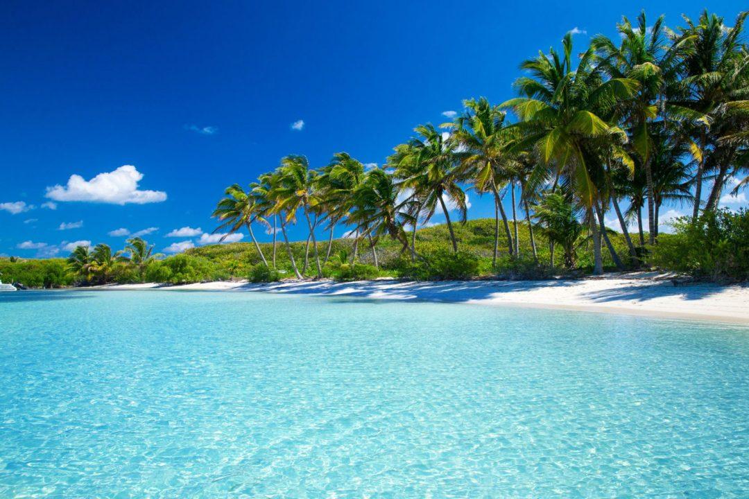 Faire son voyage de noces en Martinique
