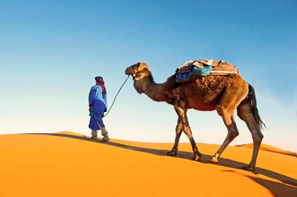 comment organiser evjf marrakech (4)